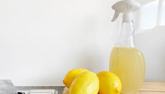 Wyrzuć chemię – domowe sposoby na utrzymanie czystości w domu
