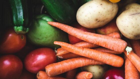 Własny warzywnik w ogrodzie