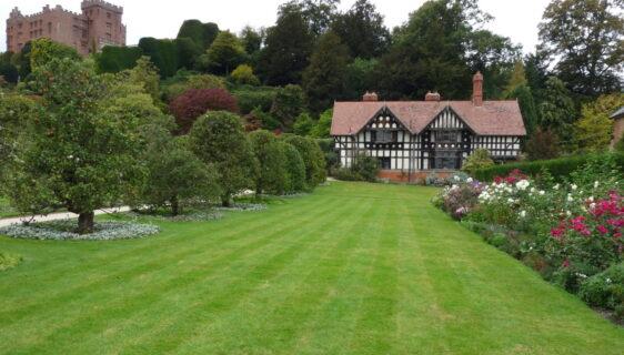 Zadbaj o trawnik w swoim ogrodzie